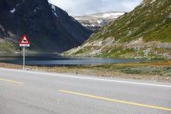 Seelandschaft mit szenischer Straße und Elche kennzeichnen Lizenzfreies Stockbild