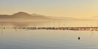 Seelandschaft am Sonnenuntergang Lizenzfreies Stockfoto