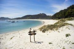 Seemöwe über Strandzeichen Stockfotografie
