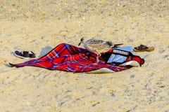 Seemöwe, die auf eine rote Stranddecke geht lizenzfreies stockbild