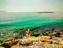 Seemöwe, die auf einem Felsen übersieht das Meer stillsteht Lizenzfreies Stockbild