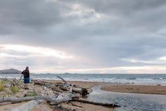 Seemöwen auf einem Strand in Ulverstone Tasmanien Lizenzfreie Stockbilder