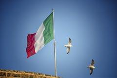 Seemöwen, die nahe italienischer Flagge fliegen Stockbilder