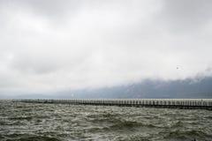 Seemöwen und das Meer stockfotos