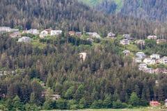 Seemöwe in Alaska Lizenzfreie Stockfotos