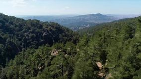 Seen from a mountain in aerial. Stock. Top view of exotic forests. Beautiful tropical forest on a Sunny day.  stock photography