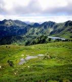 Seen und Teich im Berg Lizenzfreies Stockfoto