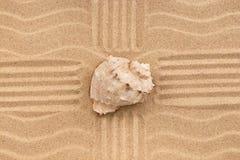 Seeoberteil im Sand mit vier Linien Stockfotografie