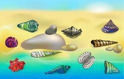 Seeoberteile auf dem Strand stock abbildung