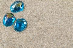 Seeoberteile auf Sand. Lizenzfreies Stockfoto