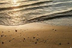 Seeoberteile mit Sandhintergrund Stockbild
