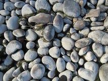 Seeosean Steinfluss-Steinstein Stockfotos
