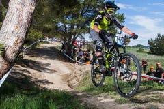 Seeotter-klassisches Fahrrad-Festival - Enduro stockbilder