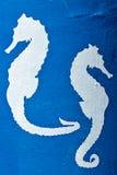 Seepferd Stockbilder