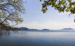 Seeraum gestaltet durch Niederlassungen und Blätter von Bäumen im Vordergrund stockfotografie