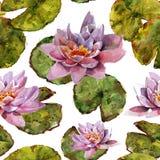Seeroseblume und nahtloses Muster des handgemachten Aquarells der Blätter Stockfoto