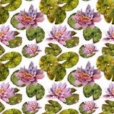 Seeroseblume und nahtloses Muster des handgemachten Aquarells der Blätter Stockbilder