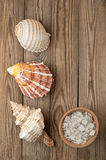 Seesalz und -oberteil auf einem Holz Stockbilder