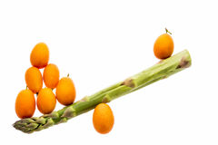 Seesaw Made From One Asparagus and Eight Kumquats. One single green asparagus spear and eight tangerine kumquats arranged to shape a seesaw. The see-saw is Stock Images