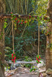 Seesaw on tropical rainforest - jungle Royalty Free Stock Image