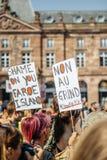 Seeschäfer, der gegen Gemetzelversuchswalfestnahme von protestiert Lizenzfreie Stockfotografie