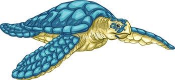 Seeschildkröte Hawksbill Lizenzfreie Stockfotos