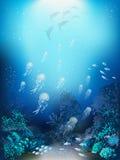 Seeschildkröte nahe Gili Meno Lizenzfreie Stockbilder