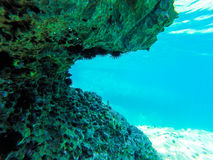 Seeschildkröte nahe Gili Meno Lizenzfreie Stockfotos