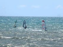 Seesegelnsport Stockbild
