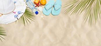 Seeshell mit Ozean auf Hintergrund stockfoto