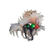 Seeshell mit Perlenkornen und -perlen Stockbilder