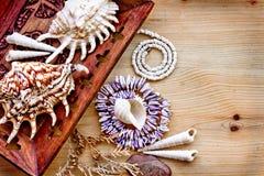 Seeshells mit Halskette als Hintergrund Lizenzfreie Stockbilder