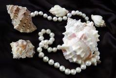 Seeshells und -perlen auf einer schwarzen Seide Stockfotos