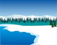 Seeshore i vinter Arkivbild