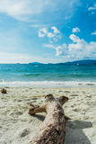 Seestrand mit Holz in Lipe-Insel in Thailand Stockfotografie