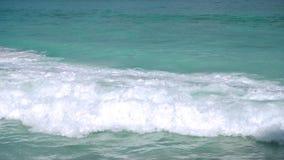 Seestrand, Seychellen stock footage