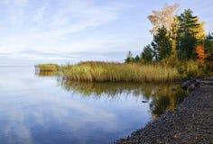 Seestrand und Gras und blauer Himmel Lizenzfreie Stockfotos