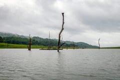 Seestumpf bewölkt und Regnen Lizenzfreie Stockfotos