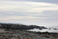Seeufer entlang China-Felsen, 17 Meilen-Antrieb, Kalifornien, USA Lizenzfreies Stockfoto