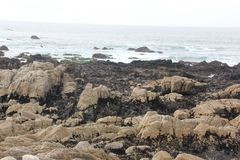 Seeufer entlang China-Felsen, 17 Meilen-Antrieb, Kalifornien, USA Stockfoto