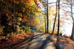 Seeufer-gehende Spur im Herbst Stockbilder