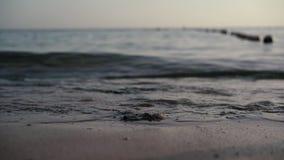 Seeufer und kleine Wellen in 4k stock video