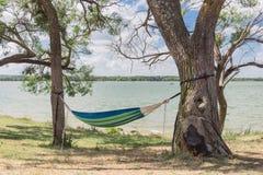 Seeuferhängematte, die zwischen sonnigem Tag der Bäume hängt lizenzfreies stockbild