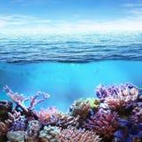 Meer Unterwasser lizenzfreies stockfoto