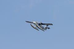 Seevogelfluglinienseeflugzeug Stockbilder