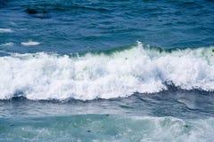 Seewelle lizenzfreie stockfotografie
