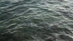 Seewelle auf felsiger Unterseite stock video footage