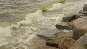 Seewelle am Strand mit Algenblüte stock video