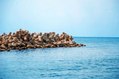 Seewellenbrecher Phu Quoc Stockfotografie