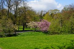 Sefton park Liverpool liverpool Stock Image